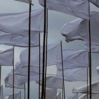 dicks' vlaggen 2